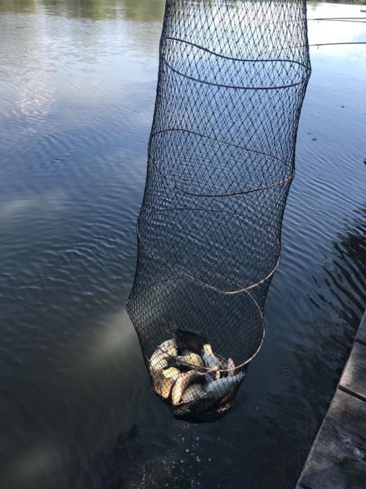 Рыбалка с помоста - фото 15